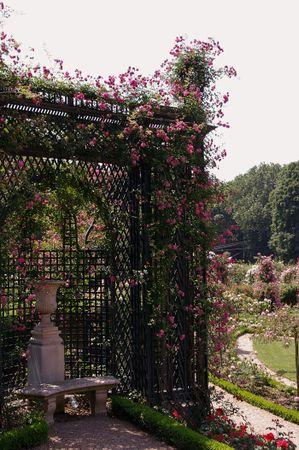 L'Hay Les Roses-L'Hay-IMGP0662-w.jpg