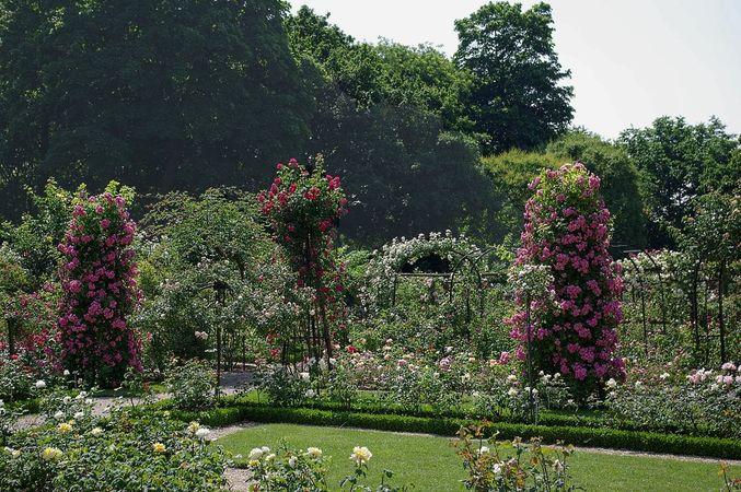 L'Hay Les Roses-L'Hay-IMGP0619-w.jpg