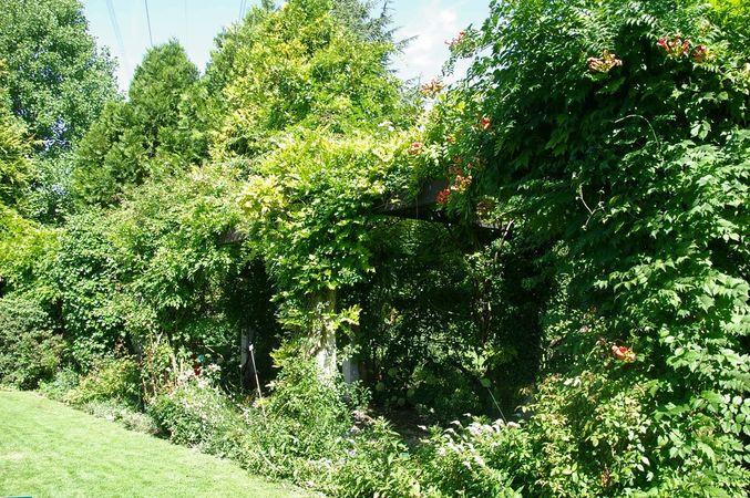Ettenbühl Gärten (5)-w.jpg