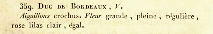 Duc de bordeaux , de guiche.jpg