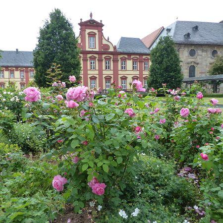Fulda, Rosengarten am Dom, Wikimedia.JPG