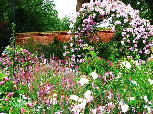 Mottisfont ros garden.jpg