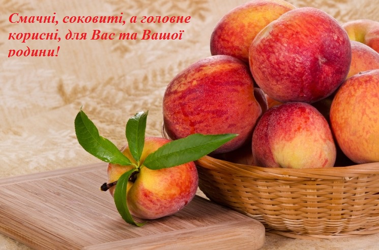 Файл:Persiki-e1433414936242.jpg