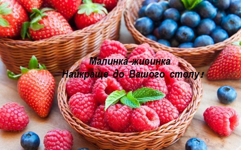 Файл:Im-berries.jpg