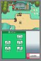 HGSS touch screen menu.png