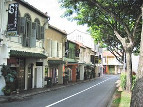 Row of shophouses along Duxton Hill where Inner Circle is located.