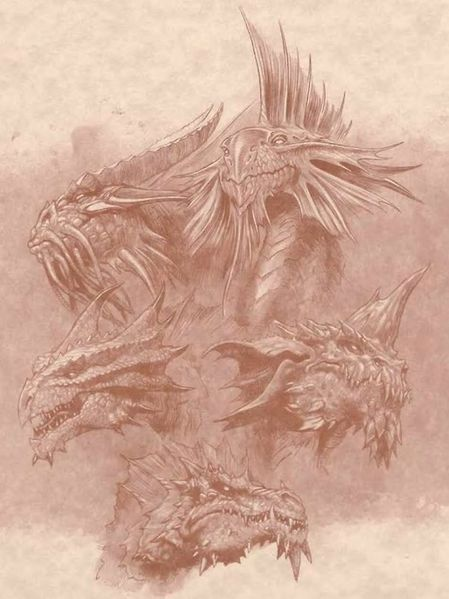 File:Dragons2.jpg