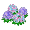 Charmforestflowers.png