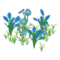 Bluewildflowers.png