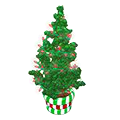 Peppermintpottedtree.png