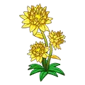 Yellowcrystalflower.png
