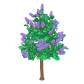Purplelilactree.png