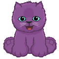Purplepersiankittenavatar.png