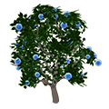 Blueraspberrycandytree.png