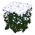 Snowcoveredhedge.png