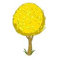 Yellowelmtree.png