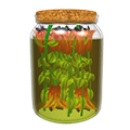 Pickleddaylilies.png
