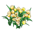 Yellowtulips.png