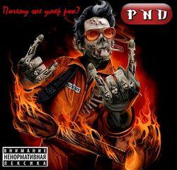 PND Почему же умер рок.jpg