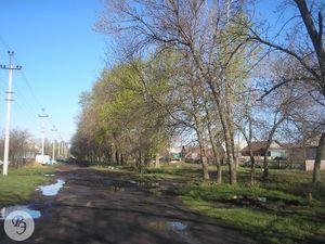 Общий вид на аллею по улице Садовой