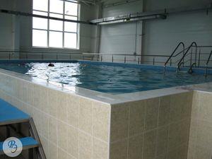 ФОК Бассейн малая ванна.jpg