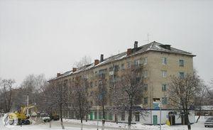 Первый дом на улице Левице (2007)