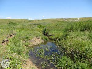 Верхнее течение реки Малый Аркадак (между селом Каменка и урочищем Гагарино)