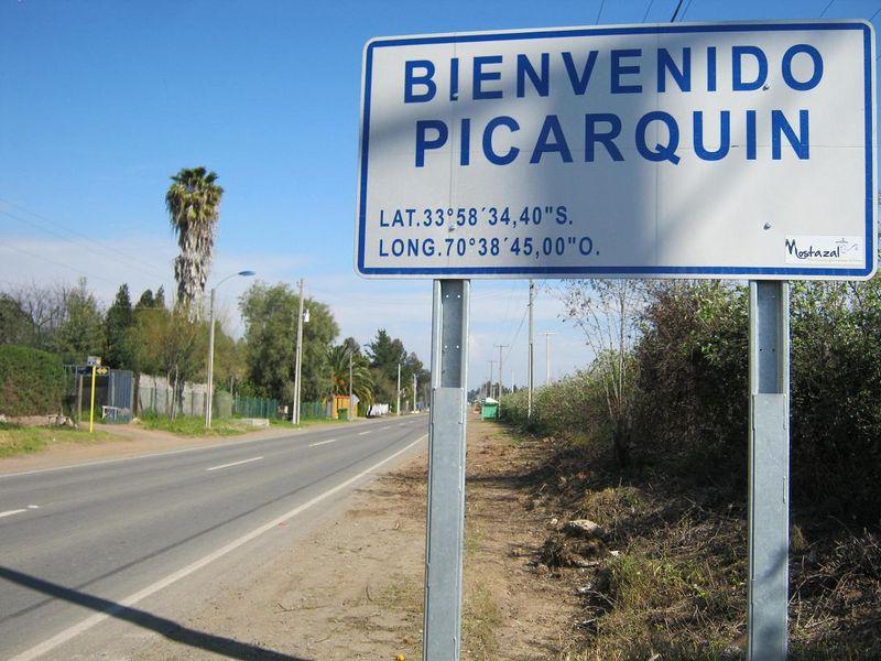 檔案:Mostazal Picarquin 2142.JPG