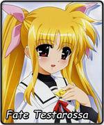 Fate Testarossap2008.jpg